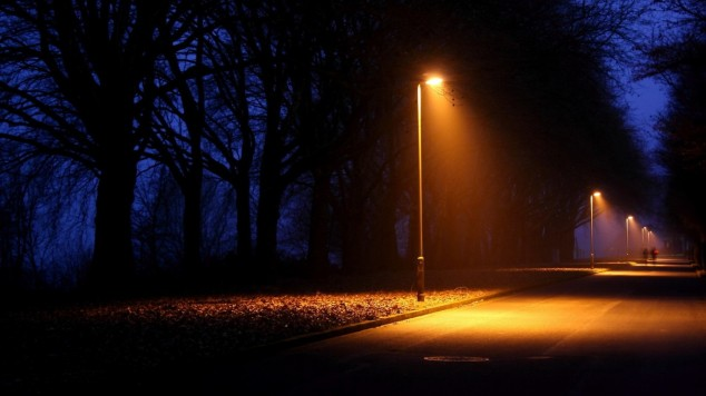 trees_dark_night_roads_street_lights_post_depression_1366x768_22613